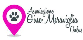 Associazione Gino Meraviglia ONLUS